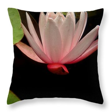 Underwater Lily 3 Throw Pillow