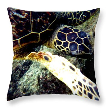 Throw Pillow featuring the photograph Underwater Sea Turtle by Karen Nicholson