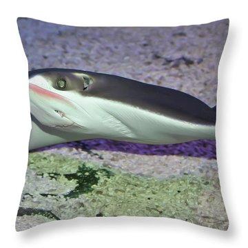 Underwater04 Throw Pillow by Svetlana Sewell