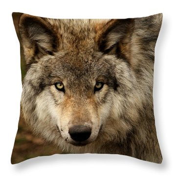 Undivided Attention Throw Pillow