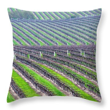 Undulating Vineyard Rows Throw Pillow