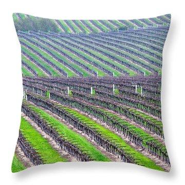 Undulating Vineyard Rows Throw Pillow by Jeff Lowe