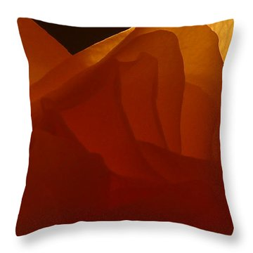 Throw Pillow featuring the photograph Une Dame by Danica Radman