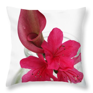 Unexpected Pairing 2 Throw Pillow by Amanda Barcon