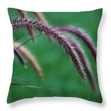Throw Pillow featuring the photograph Unexpected Sharpness by Vadim Levin