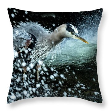 Throw Pillow featuring the photograph Unfazed Focus by Everet Regal