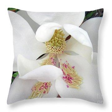 Unfolding Beauty Of Magnolia Throw Pillow