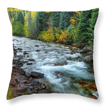 Unfolding Splendor Throw Pillow
