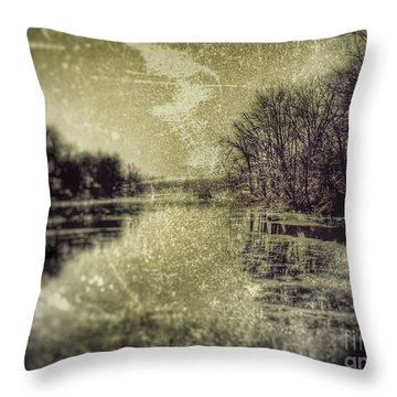 Unfrozen Lake Throw Pillow
