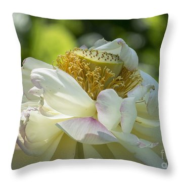 Unfurling Throw Pillow