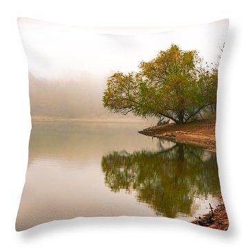 Unger Park Lake At Dawn Throw Pillow by Robert FERD Frank