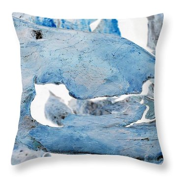 Unidentified Aquatic Object Throw Pillow