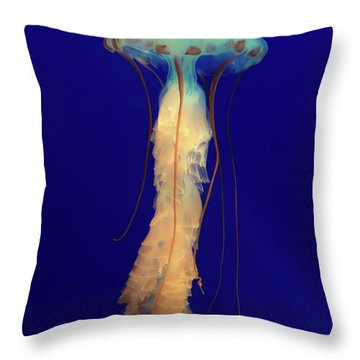 Unidentified Floating Obejct Throw Pillow
