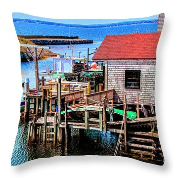 Unique Cove Throw Pillow