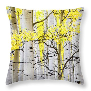 Unititled Aspens No. 6 Throw Pillow by The Forests Edge Photography - Diane Sandoval