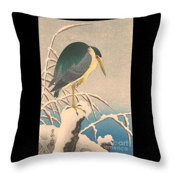 Unknown Bird Throw Pillow