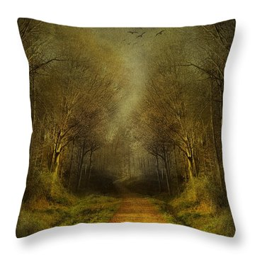 Unknown Footpath Throw Pillow by Svetlana Sewell