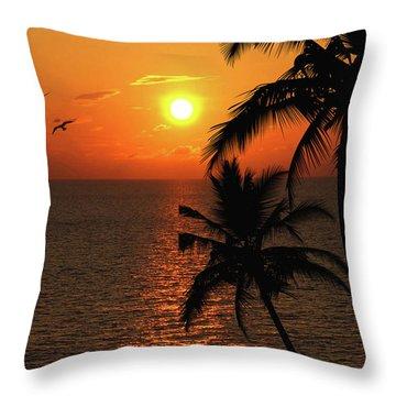 Unknown Paradise Throw Pillow