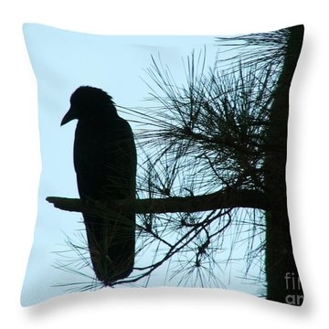 Unknown Visitor Throw Pillow