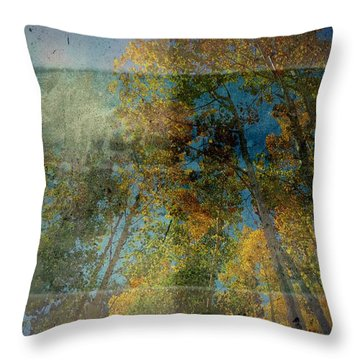 Throw Pillow featuring the photograph Unmanned by Mark Ross