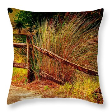 Unmended Fence Throw Pillow
