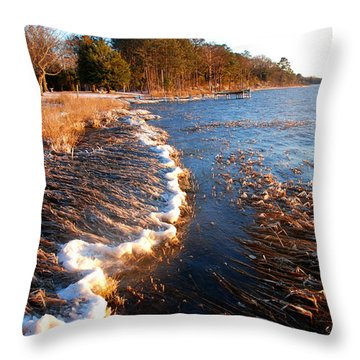 Unmoving Throw Pillow
