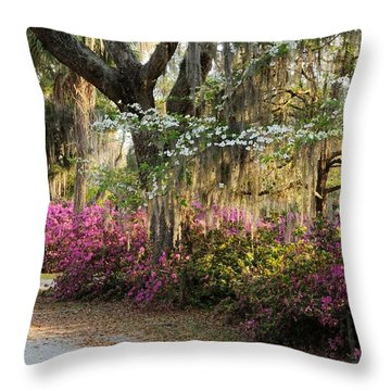 Unpaved Road In Spring Throw Pillow