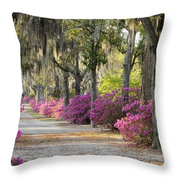 Unpaved Road With Azaleas And Oaks Throw Pillow