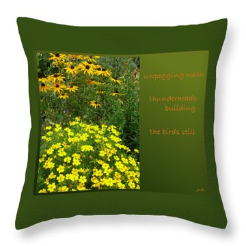 Throw Pillow featuring the digital art Unpegging Wash Haiga by Judi and Don Hall