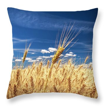 Unruly Beauty Throw Pillow