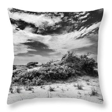 Unspoiled Throw Pillow by Alan Raasch