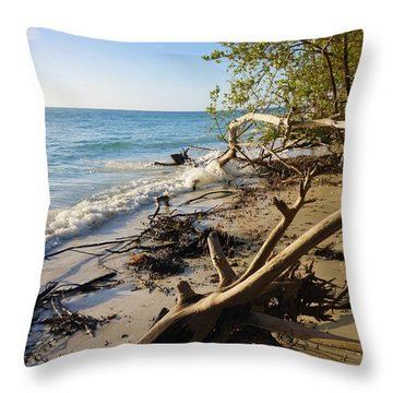 The Unspoiled Beaty Of Barefoot Beach Preserve In Naples, Fl Throw Pillow