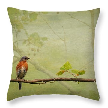 Until Spring Throw Pillow