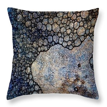 Untitled 13 Throw Pillow