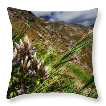 Untitled 94 Throw Pillow