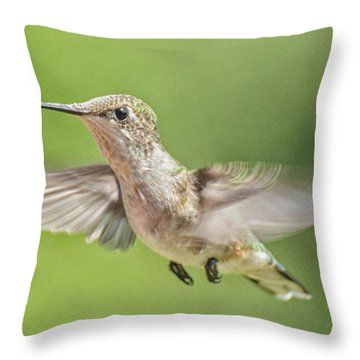 Untitled Hum_bird_three Throw Pillow