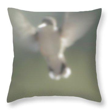 Untitled Hummingbird Throw Pillow