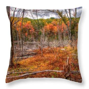 Untouchen  Throw Pillow