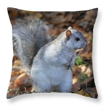 Throw Pillow featuring the photograph Unusual White And Gray Squirrel by Doris Potter