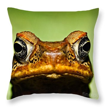 Unwanted Intruder Throw Pillow by Joerg Lingnau