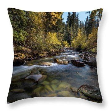 Up A Colorado Creek Throw Pillow