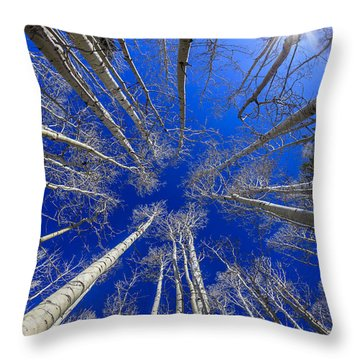 Up Throw Pillow by Alexey Stiop