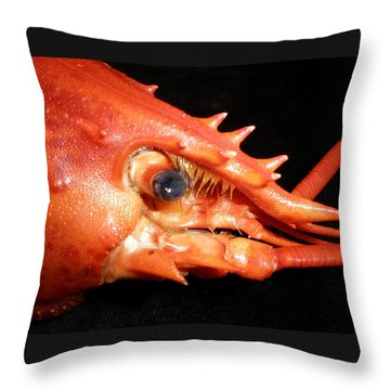 Up Close Lobster Throw Pillow by Patricia Piffath
