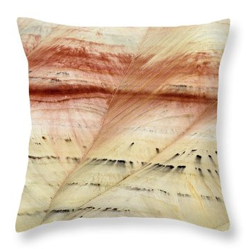 Up Close Painted Hills Throw Pillow by Greg Nyquist