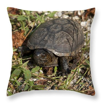 Up Close With Slow Throw Pillow