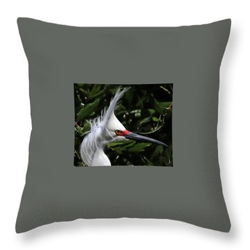 Up From A Nap Throw Pillow by Lamarre Labadie
