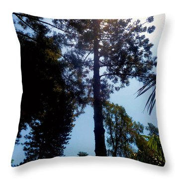 Up In The Sky Trees Throw Pillow