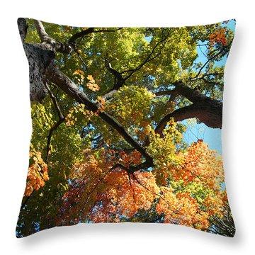 UP Throw Pillow by Joseph G Holland