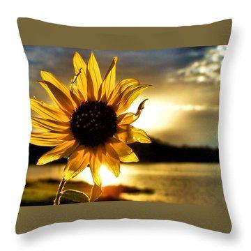 Summer Vacation Throw Pillows