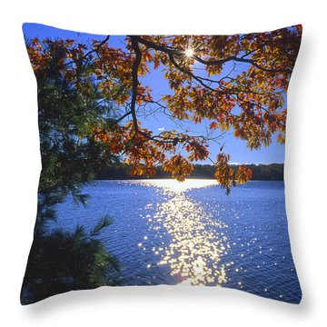 Up North Morning Throw Pillow